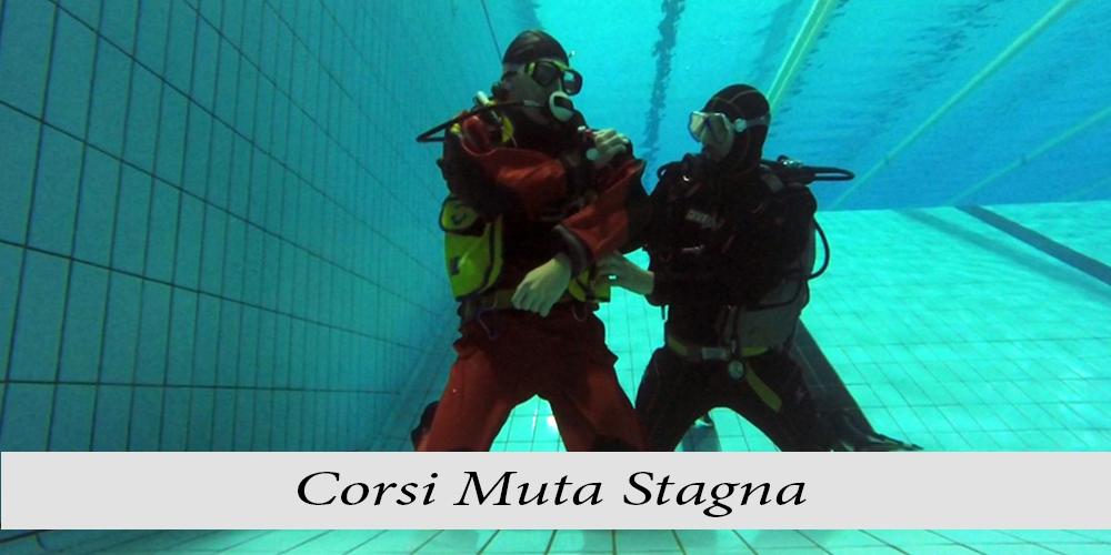 Muta-stagna_c